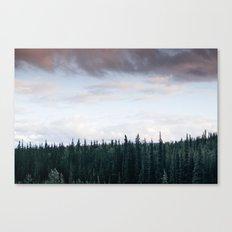 Alaska Trees in Denali National Park Canvas Print