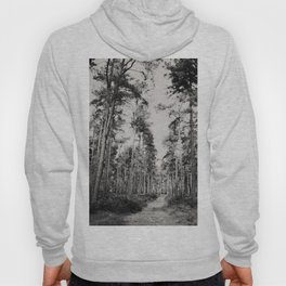 the path through the forest ... Hoody