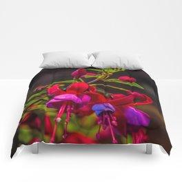 Fuchsia Dreams Comforters
