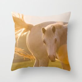 sun in horse's tail Throw Pillow