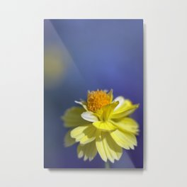 Yellow solitaire 2 038 Metal Print