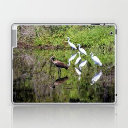 Egrets And Ibis Laptop & iPad Skin
