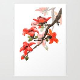red orange kapok flowers watercolor Art Print