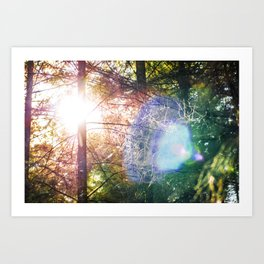 Visitor from the Sun Art Print