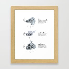 Dog Skull Comparison Framed Art Print