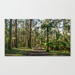 Mount Dandenong, Victoria Canvas Print