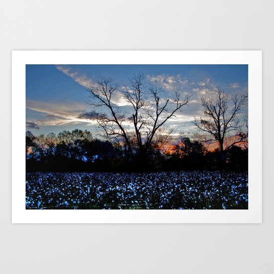 Another Early Morning in the Cotton Field Art Print