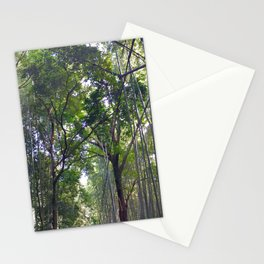 Bamboo Forrest Stationery Cards