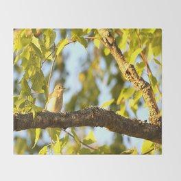 Songbird Singing On The Branch  #decor #society6 Throw Blanket
