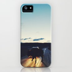 Bison in the Headlights Slim Case iPhone (5, 5s)