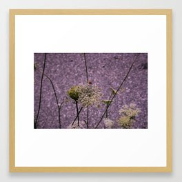 Seclusion Framed Art Print