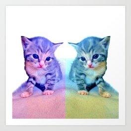Cute Colorful Cat Couple Art Print