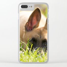I'm not a fox but a Malinois puppy Clear iPhone Case