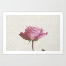 Linen Rose Art Print
