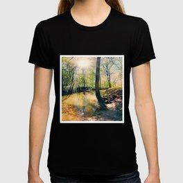 I Wish I Had A River I Could Sail Away On T-shirt