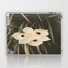 Little White Laptop & iPad Skin