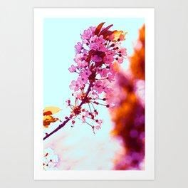Spring Sweetness Art Print
