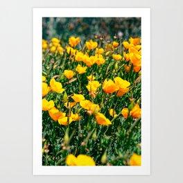 Golden State Art Print