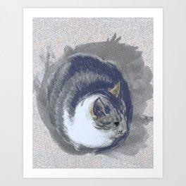 Fat Cat II Art Print