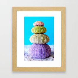Oursin color coquillage Framed Art Print