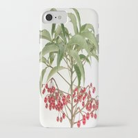 spice iPhone & iPod Cases featuring Spice Berry  by taiche