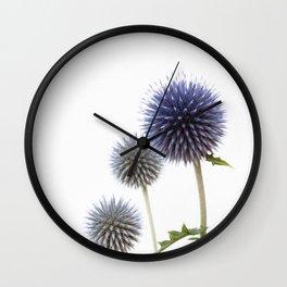 Echinops - Globe Thistles #1 #decor #art #society6 Wall Clock