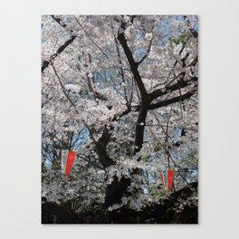 Sakura season in Japan Canvas Print
