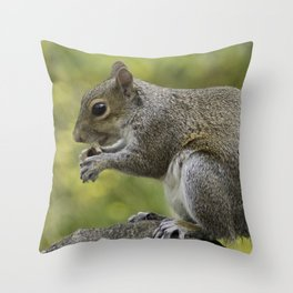 SQUIRREL EATING A NUT Throw Pillow