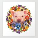 Pansy Pig by janeferwong