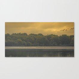 Flight. Canvas Print
