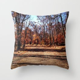 The Trial in South Mountain Reservation Throw Pillow