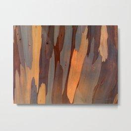 Eucalyptus Texture 2 Metal Print