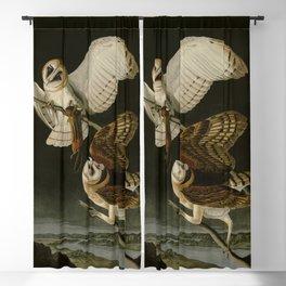 171 Barn Owl Blackout Curtain