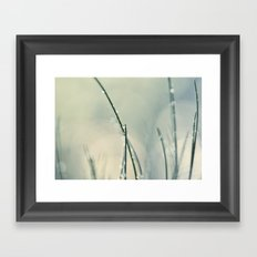 grass bokeh Framed Art Print
