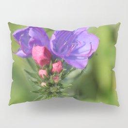 Viper's bugloss blue and pink flowers 2 Pillow Sham