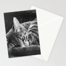 my pet, Peeve Stationery Cards