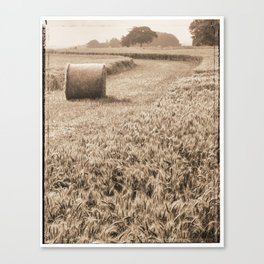 Harvest time Canvas Print