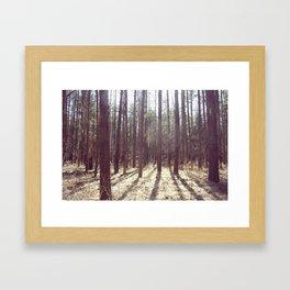 nature hike. Framed Art Print