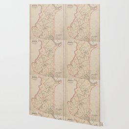 Vintage Map of Brighton MA (1885) Wallpaper