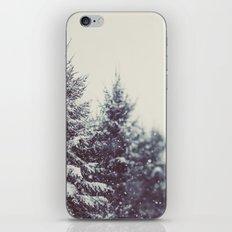 Winter Daydream #2 iPhone & iPod Skin