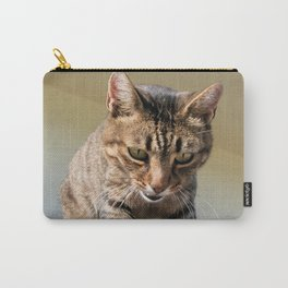 Tabby Cat Looking Down From A Height  Carry-All Pouch