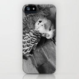 pude iPhone Case