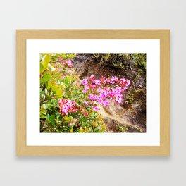 Volcanic Petals Framed Art Print