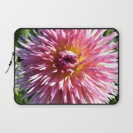 BEAUTIFUL PINK DAHLIA IN THE LATE AFTERNOON SUNSHINE Laptop Sleeve