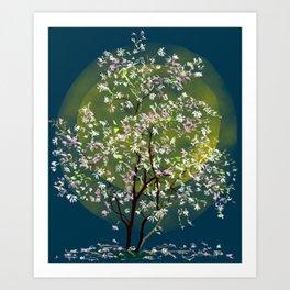 Moonlit Magnolia Art Print