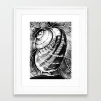 snail Framed Art Prints featuring Snail by MARIA BOZINA - PRINT