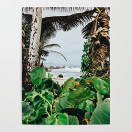 The surfer's spot in Barbados Poster