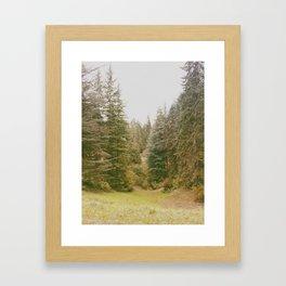 Hoyt Arboretum Framed Art Print