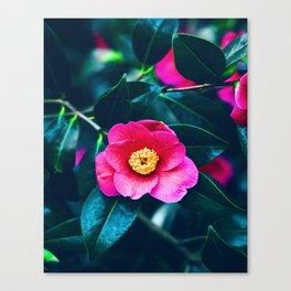 Gloomy Bloom Canvas Print