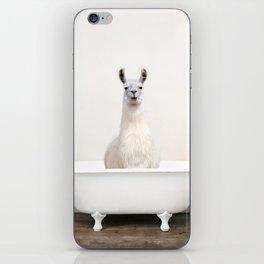 llama in a Vintage Bathtub (c) iPhone Skin